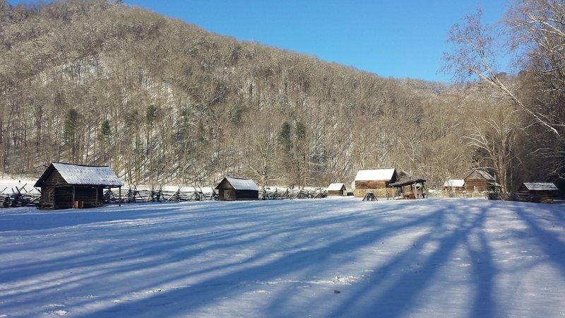 January snow near the Oconaluftee River Trail.