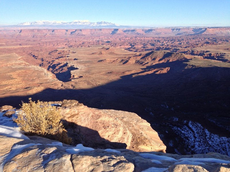 Canyonlands with the La Sal mountains in the background.