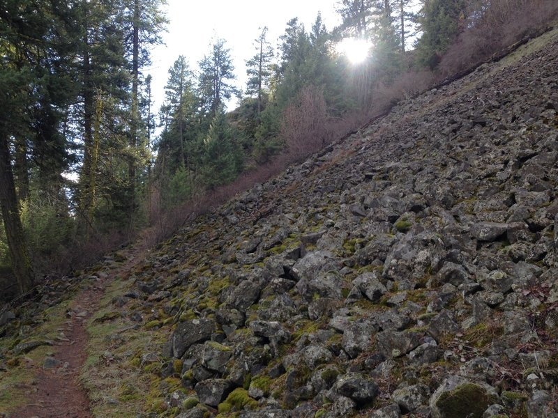One of many scree fields in Riverside State Park.