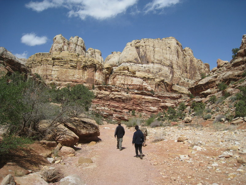 Grand Wash Trail - Capitol Reef.