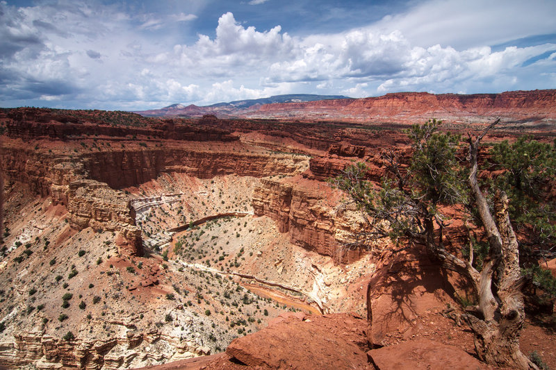Panorama Point, Capital Reef.