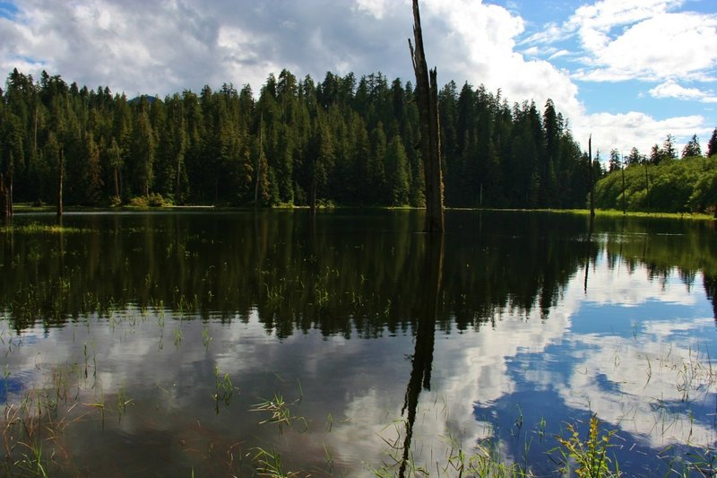 Irely Lake in late spring.