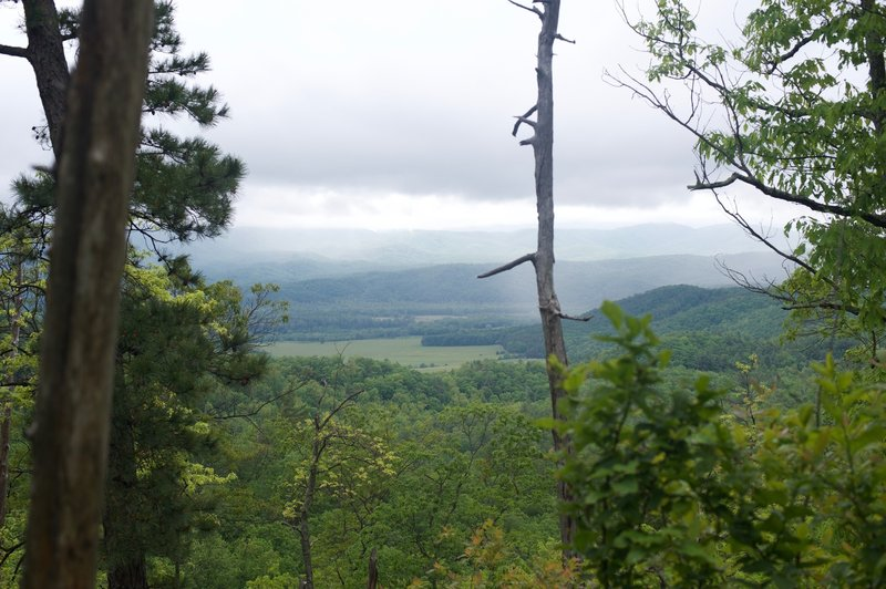 Obstructed views of Cades Cove and the Smokies from the trail.