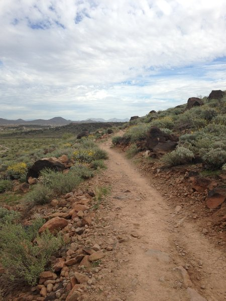 Circumference Trail after first climb.