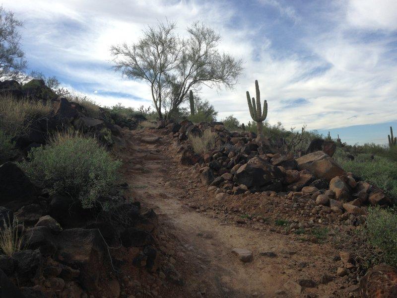 Third climb on Circumference Trail.