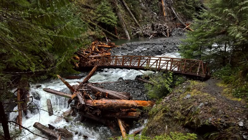 Bridge on the Big Creek Trail in Olympic National Park in Feb 2016 taken on a day with 2 inches of rain. The bridge was off its footings, but still passable for those willing to traverse the log jam on the far side.
