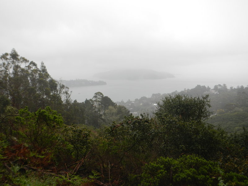 Angel Island and Tiburon in the rain.