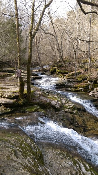 Between Evans Mill and Mill Pond Dam.