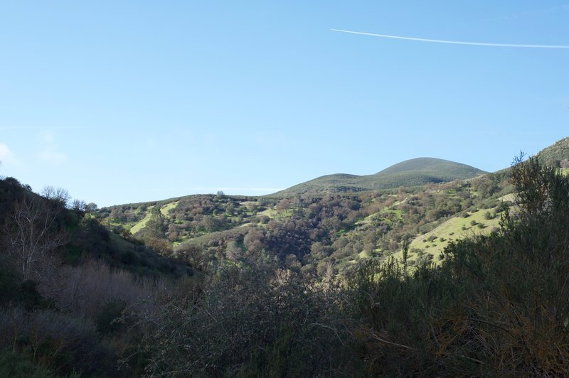 View from the trail of the surrounding hillside.