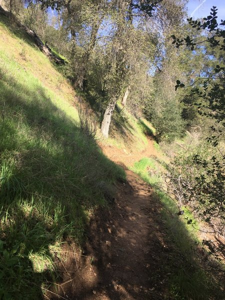 The trail skirts a narrow hillside with a steep drop-off on the right hand side. It's the trickiest part of the hike, but nothing that can't be conquered.