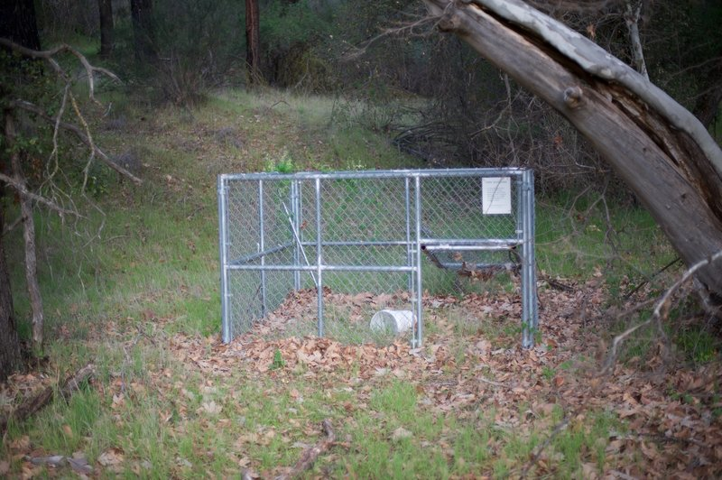Wild hog trap along the trail.