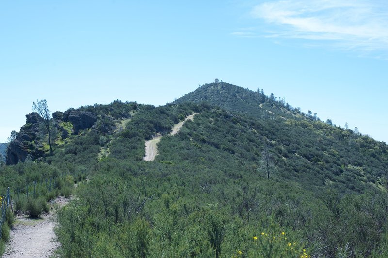 The trail leading up to North Chalone Peak. You'll notice the fire tower at the top.
