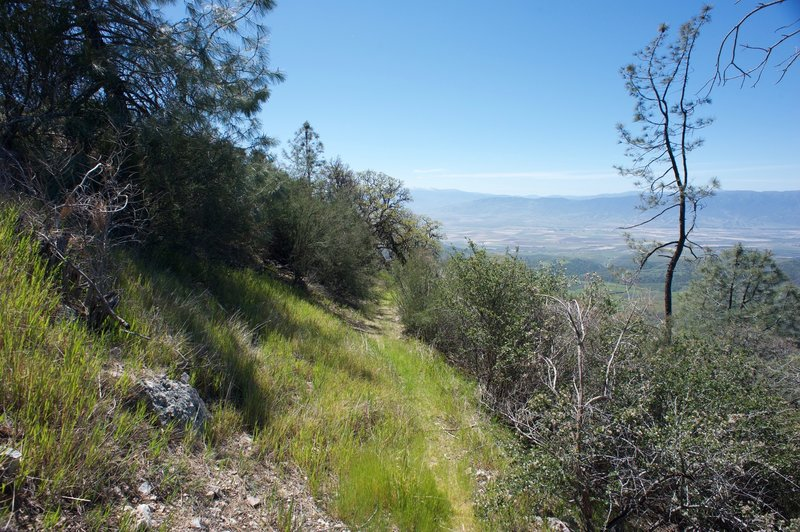 The trail gets narrow at this point and becomes less maintained.