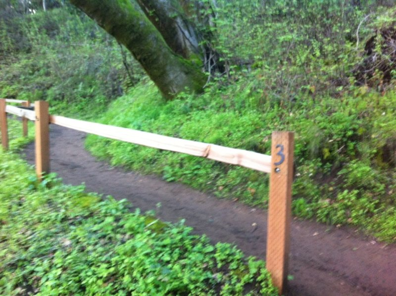 Wildcat Loop Trail. Switchbacks are numbered, 3 of 7.