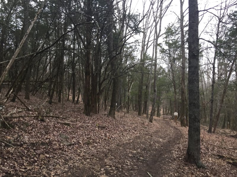 Black Trail and Blue Trail merging