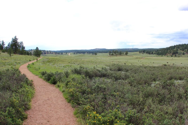 Through Petrified Forest Loop Trail.