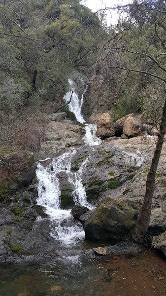 Codfish Falls.