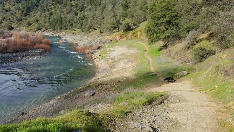 Codfish Creek Trailhead.