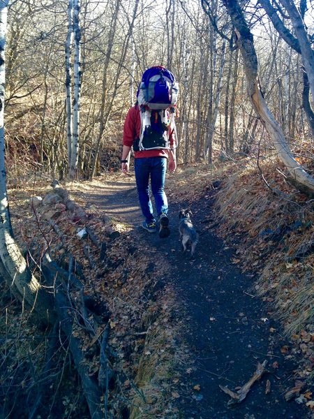 Spring hiking with the dog and kid.