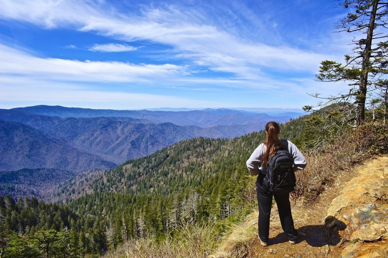 Great view on our way to MT. Leconte from the alum cave trailhead. Great Smoky Mountains N.P.