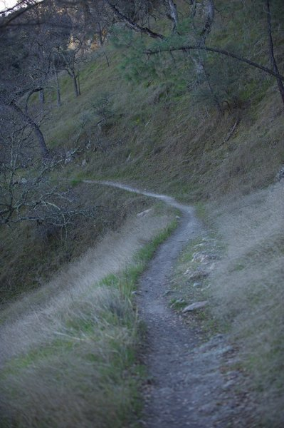 The narrow trail hugs the ridge line before it switches back on itself.