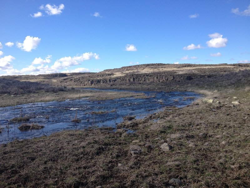 Crab Creek, with some basalt formations far in the distance.