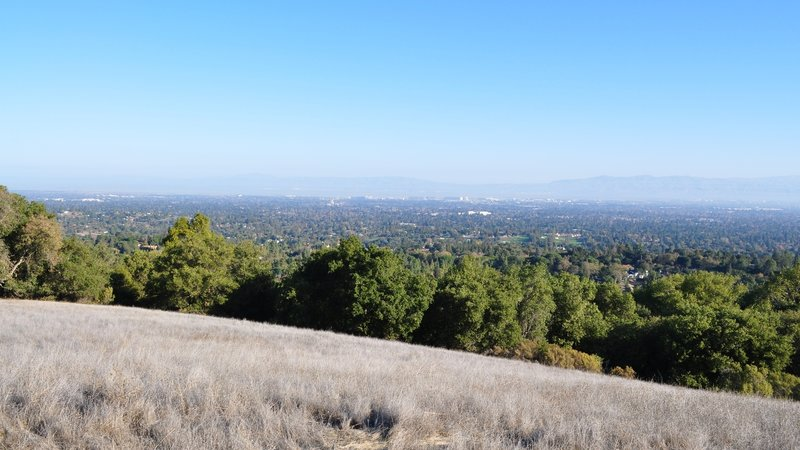 Incredible views from the Wildcat Trail.