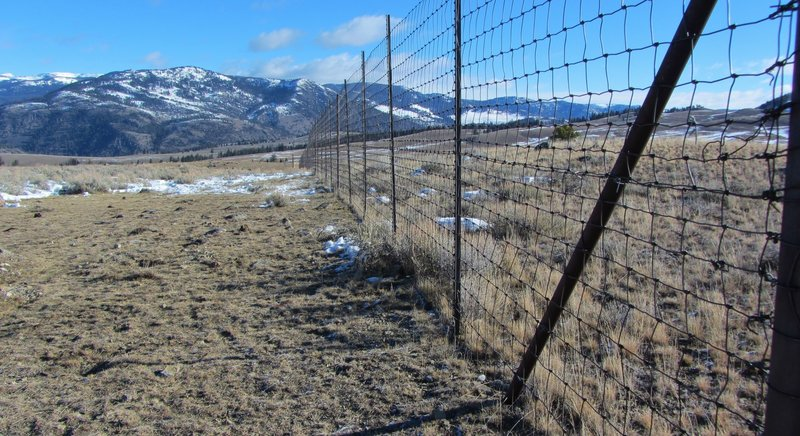 """Elk exclosures"" used by park biologists to study the effects of Yellowstone's browsing animals on the native vegetation. Note the taller grass on the right side, inside the exclosure."