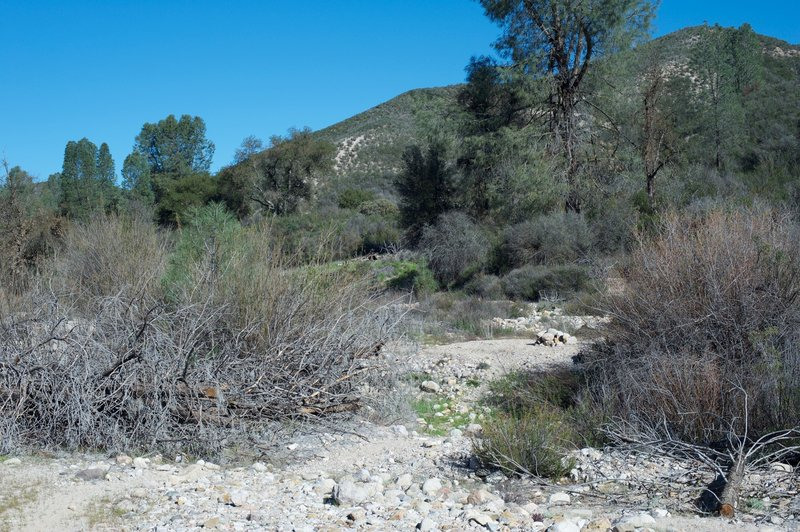 The trail moving through the old creek bed and a cairn showing the way through the rocks and sand.