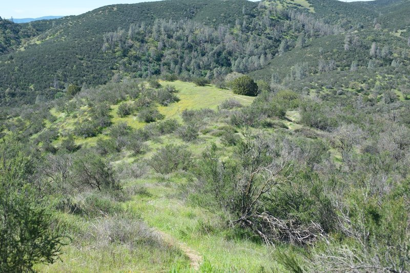 As you move downhill, you can see the North Wilderness trail off in the distance.