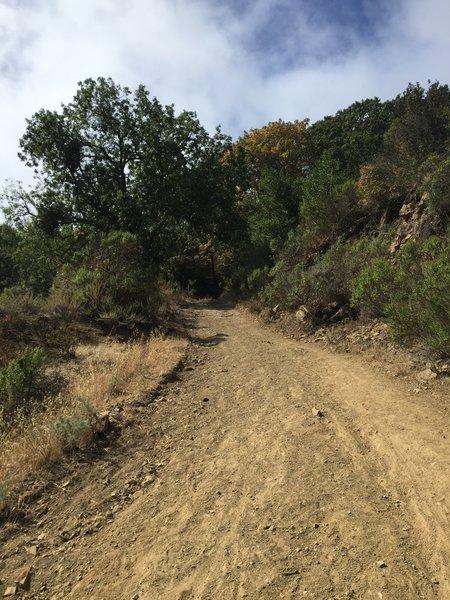 Del Amigo Trail.