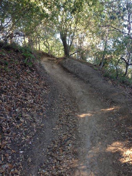 Climbing on Del Amigo Trail.