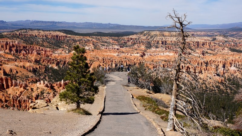 The path to Bryce Point