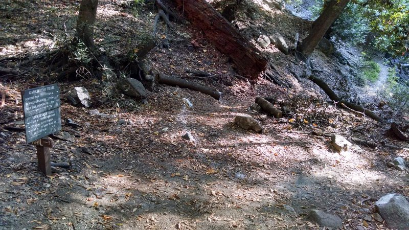 Junction of Gabrielino and Sturtevent Trails