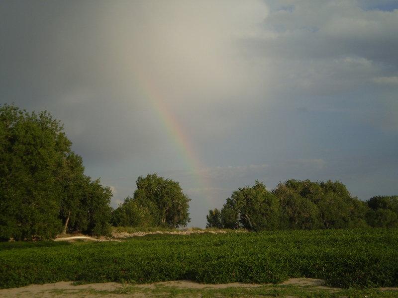 Rainbow over Barr Lake.