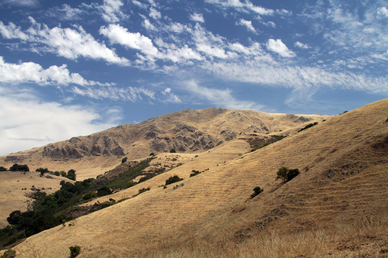 The dry side of Mission Peak, as seen from the Horse Haven Trail.