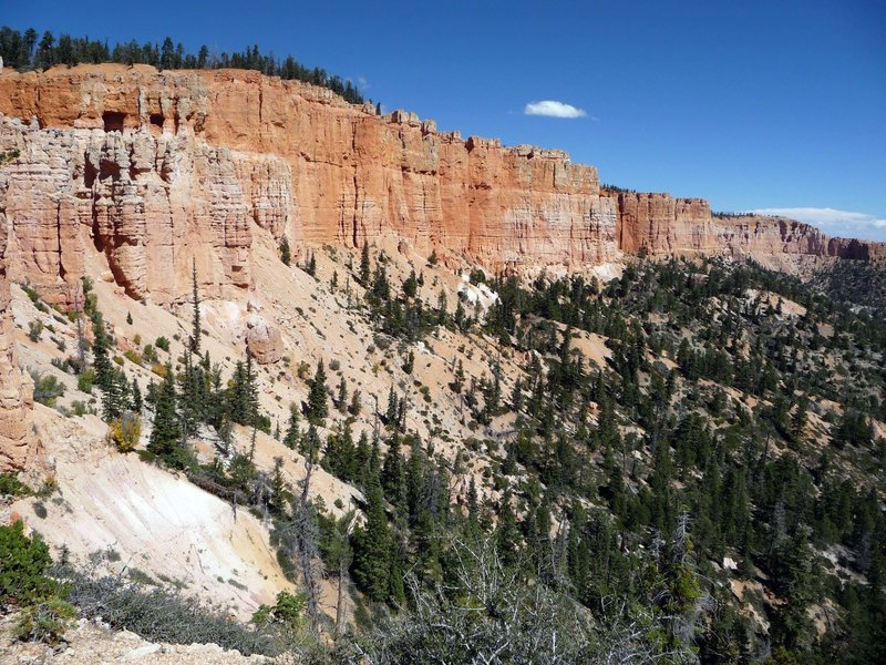 Bryce Canyon NP from the Riggs Spring Trail.