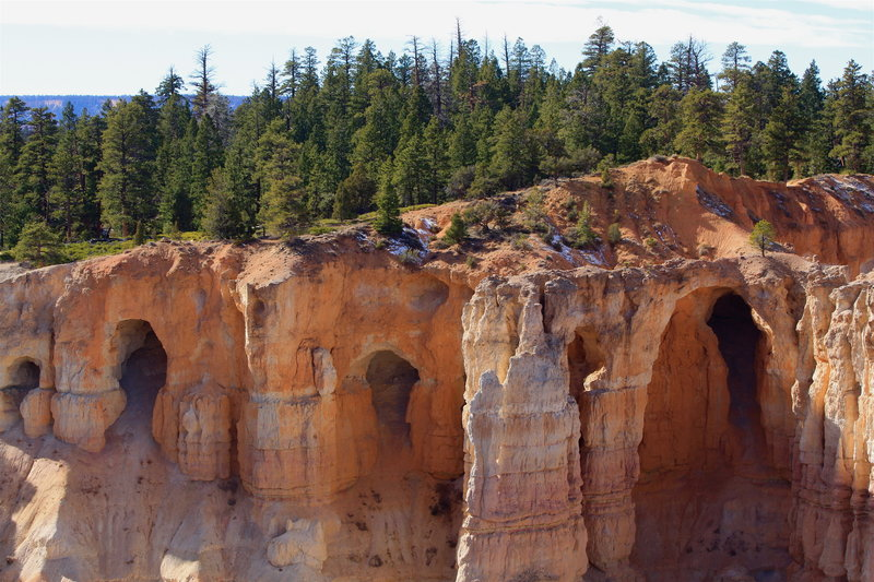 Arches in the Upper Claron Formation near Bryce Point.