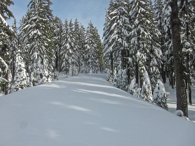 Rim Road / Ski Trail - Crater Lake National Park.