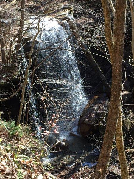 Big Laurel Falls.