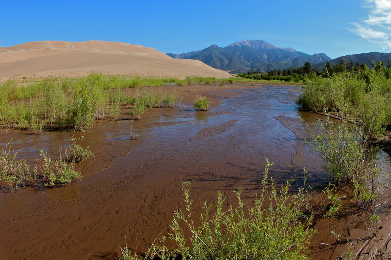 Medano Creek brings a bit of green to the Great Sand Dunes.