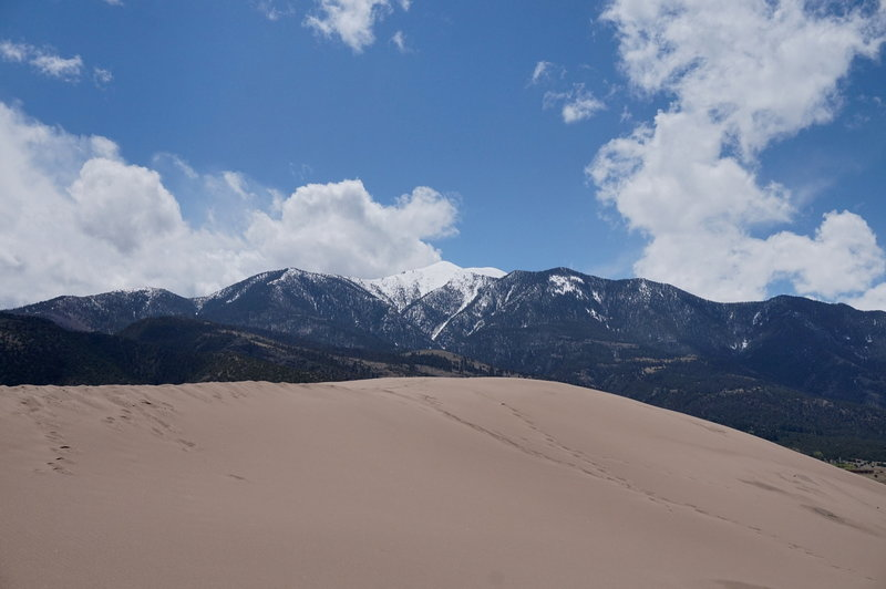 The Sangre de Cristo mountains are the perfect background for the dunes.