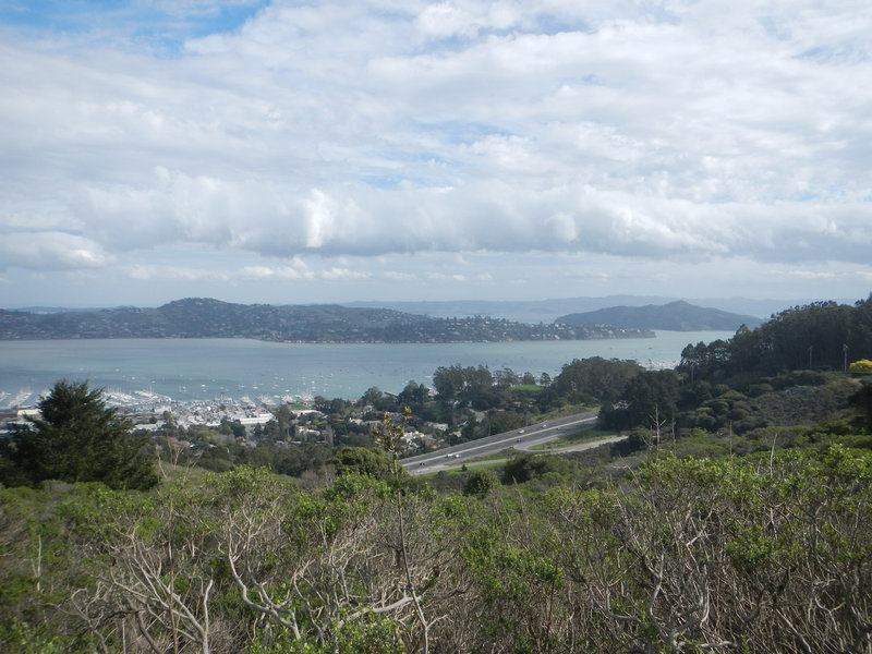 Sausilito and Belvedere Peninsula from atop the Alta Trail.