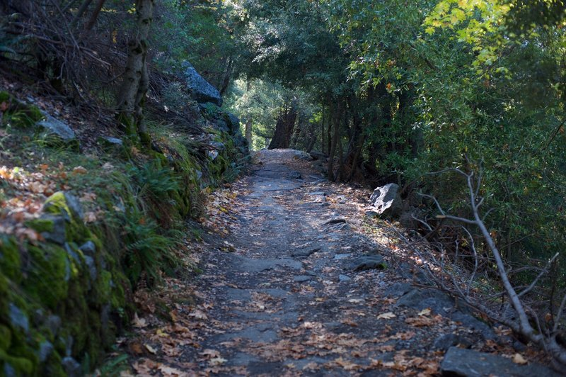 The trail as it rises from the valley floor.