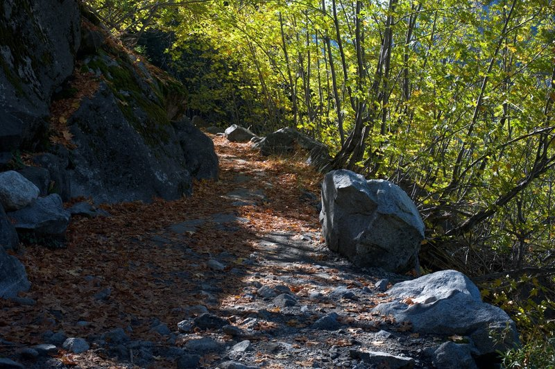 The trail is rocky through this area.