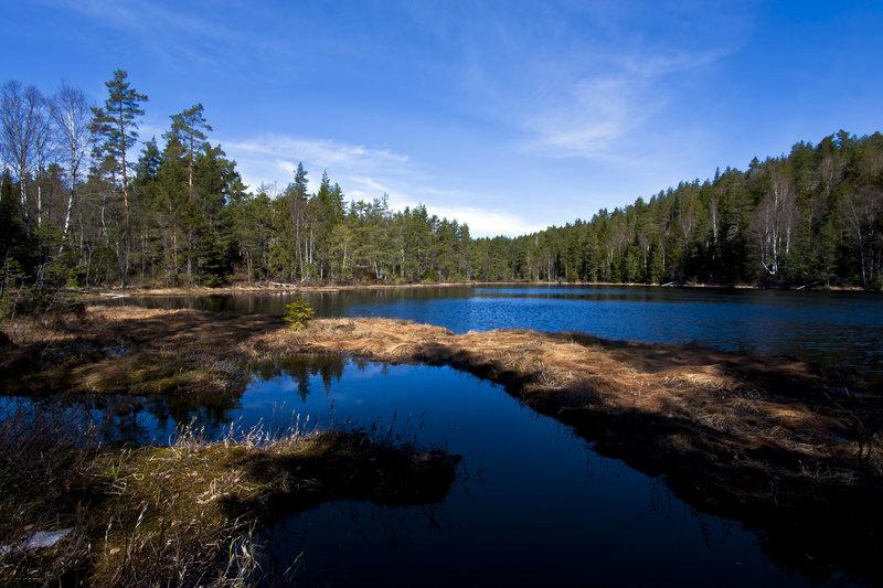 Lake views are abundant.