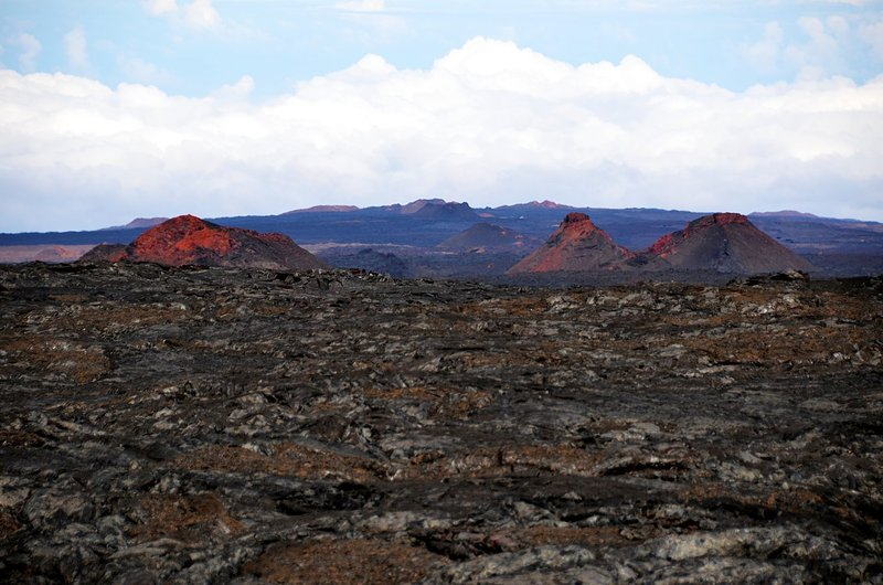 Cinder cones of Mauna Loa. with permission from Andrew Stehlik