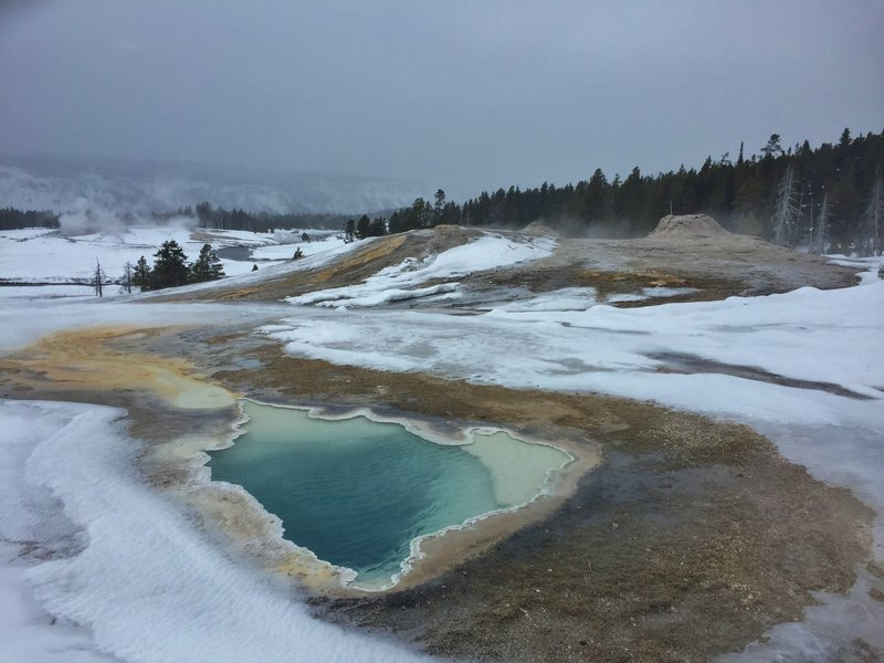 A winter trek around Geyser Hill is an excellent way to spend your time in the Old Faithful area. Here, beautiful Heart Spring's runoff channel heads to the Firehole River (with the geyser cones of the Lion Group behind).