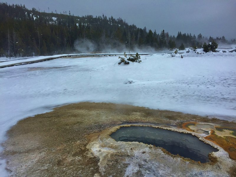 Ear Spring, one of many beautiful springs on Geyser Hill.