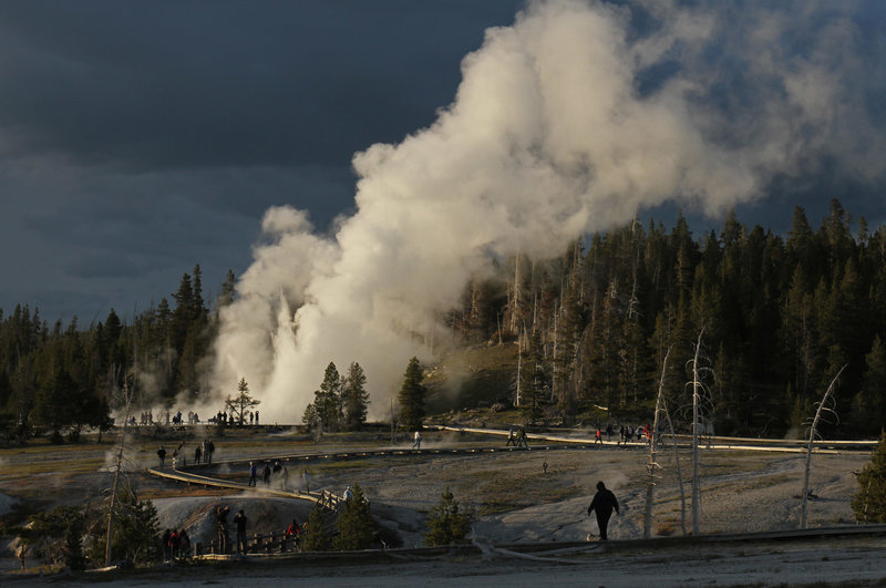 Grand Geyser's massive 180 foot eruptions can be seen from all over the Upper Geyser Basin.